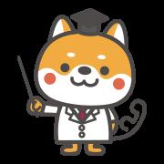 医療保険イメージ